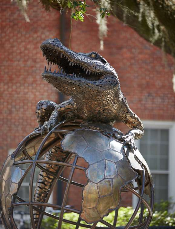 Alligator on top of the world